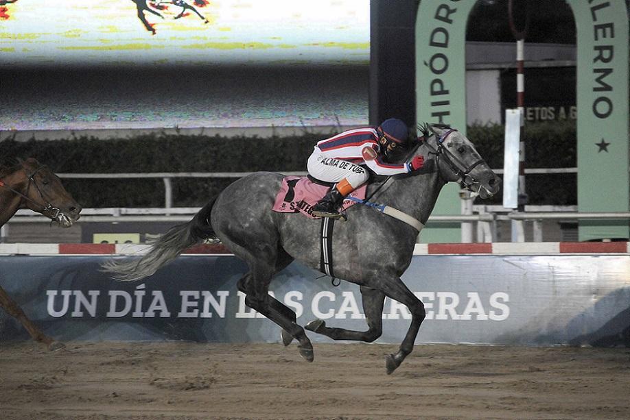 Strategos, horse, Haras La Pasión, Gran Premio de Honor, sábado, 3 de abril de 2021, Hipódromo de Palermo. Foto: Cortesía RRPP Palermo