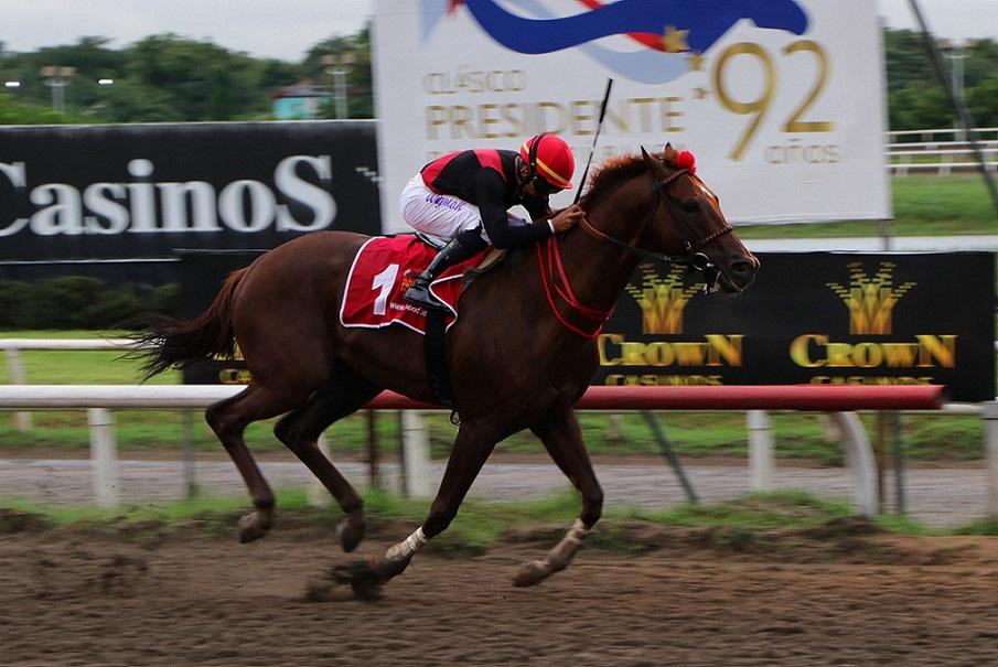 Capocostello, horse, Cross Traffic, 92 Clásico Presidente de la República Panamá, sábado, 29 de mayo de 2021, Presidente Remón. Foto: Erick M.