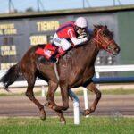 Tropeadora, horse, Haras Santa María de Arara, Clásico de Potrancas, miércoles, 2 de junio de 2021, Hipódromo de San Isidro. Foto Prensa HSI
