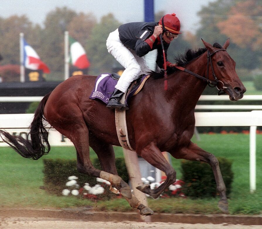 Inside Information, horse, Ogden Mills Phipps, Breeders´Cup Distaff, sábado, 28 de octubre de 1995, Belmont Park. Foto: Coglianese Photo