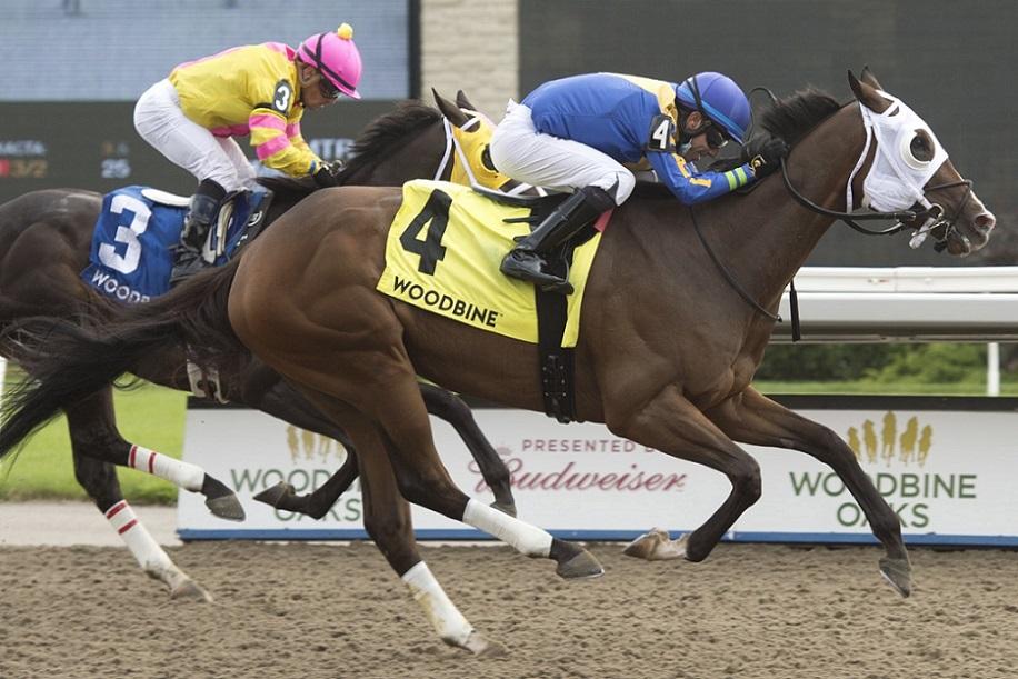 Avoman, horse, Old Forester, Plate Trial Stakes, domingo, 1 de agosto de 2021, Woodbine. Foto: Michael Burns Photography