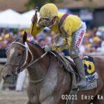 Clairiere, horse, Curlin, Cotillion Stakes, sábado, 25 de septiembre de 2021, Parx Racing. Foto: Eric Kalet