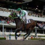 Giovannina, horse, Ruller Chief, Clásico Handicap de las Estrellas, sábado, 25 de septiembre de 2021, Hipódromo de Las Américas. Foto: Miguel Ángel Espinoza