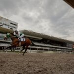 Hakkasan, horse, Zeewat, Clásico Kremlin, sábado, 18 de septiembre de 2021, Hipódromo de Las Américas. Foto: Miguel Ángel Espinoza