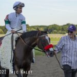 Hot Rod Charlie, horse, Oxbow, Pennsylvania Derby, sábado, 25 de septiembre de 2021, Parx Racing. Foto: Eric Kalet