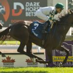 La Dragontea, horse, Lope De Vega, Canadian Stakes, sábado, 18 de septiembre de 2021, Woodbine. Foto: Michael Burns Photography