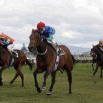 Sweet Declararion, horse, Haras Matriarca, Carrera Condicional, lunes, 13 de septiembre de 2021, Club Hípico de Santiago. Foto: Jaime Cortés