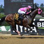 Locally Owned, horse, Distorted Humor, Jockey Club International Stakes, sábado, 18 de septiembre de 2021, Belmont Park. Foto: Coglaniese Photo & Susie Raisher