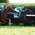Blowout, horse, Dansili (GB), UK HealthCare First Lady Stakes, sábado, 9 de octubre de 2021, Keeneland. Foto: Coady Photography