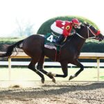 Letruska, horse, Rancho San Jorge, Juddmonte Spinter Stakes, domingo, 10 de octubre de 2021, Keeneland. Foto: Coady Photography