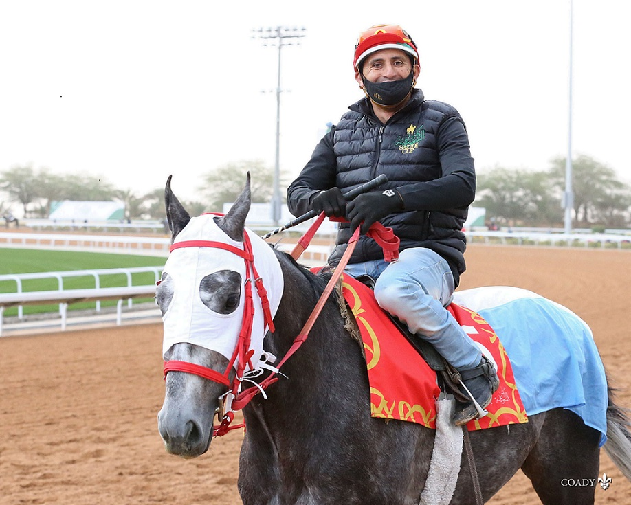 Miriñaque, horse, Hurricane Cat, Trabajos del Turf Handicap, 19 febrero de 2021, Hipódromo de King Abdul Aziz-KSA. Foto: Coady Photo