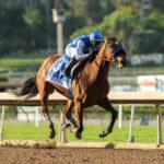 Private Mission, Horses, Into Mischief, Zenyatta Stakes, domingo, 3 de octubre de 2021, Santa Anita Park. Foto: Benoit Photo