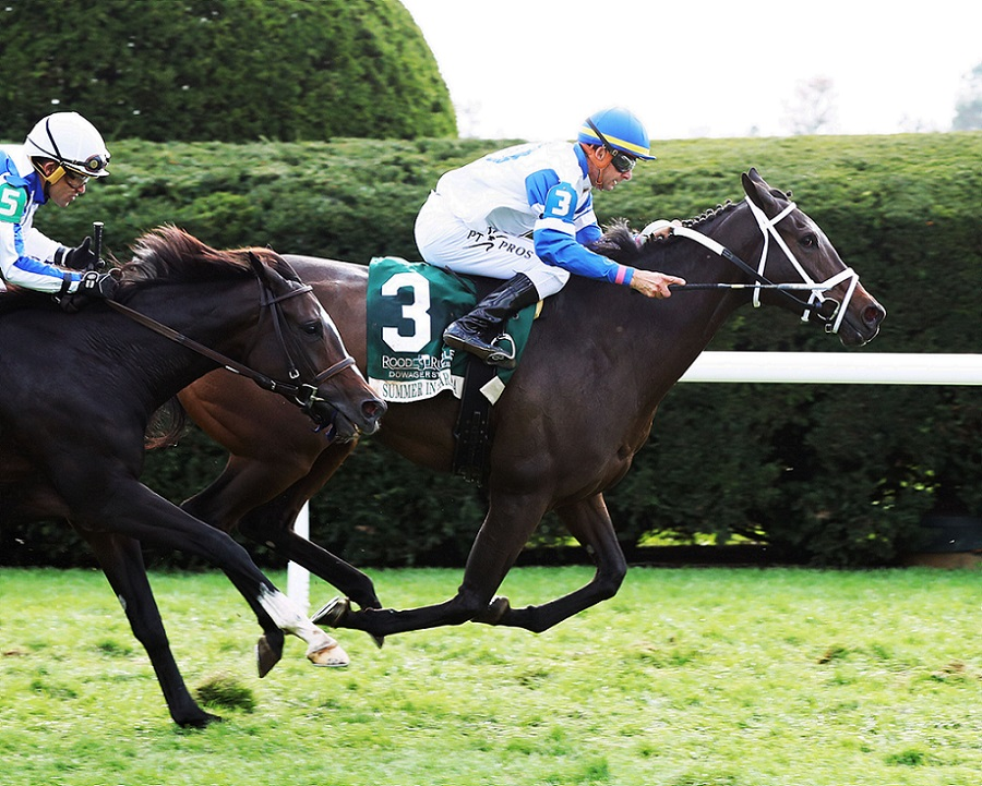Summer In Saratoga, horse, Hard Spun, Rood and Riddle Dowager Stakes, domingo, 24 de octubre de 2021, Keeneland. Foto: Coady Photo