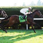Tiz The Bomb, horse, Hit It A Bomb, Castle Key Bourbon Stakes, domingo, 10 de octubre de 2021, Keeneland. Foto: Coady Photography