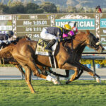 United, Horses, Giant´s Causeway, John Henry Turf Championship Stakes, sábado, 2 de octubre de 2021, Santa Anita Park. Foto: Benoit Photo
